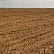 Obavijest dosadašnjim korisnicima poljoprivrednog zemljišta u vlasništvu države